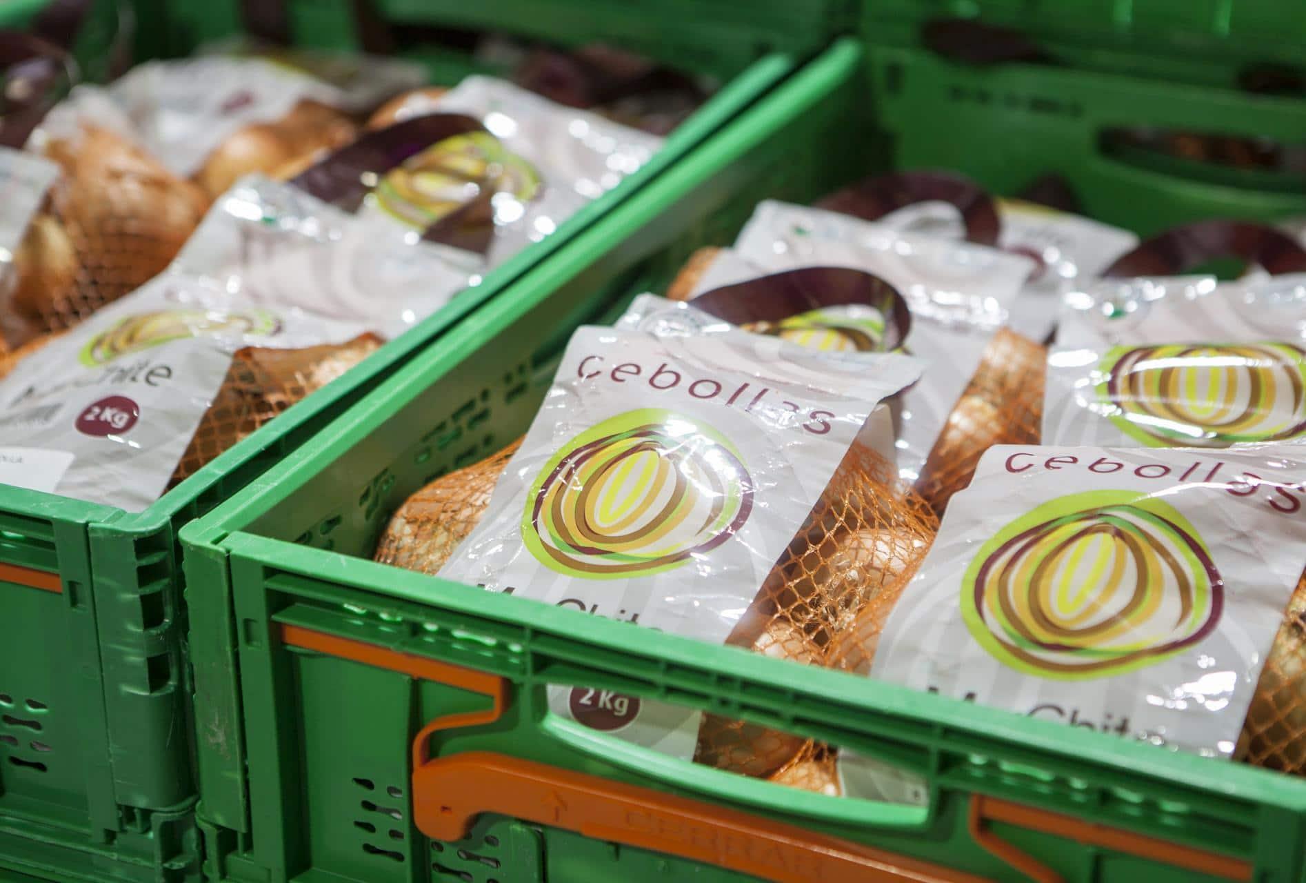 cebollas marchite comercializacion nacional