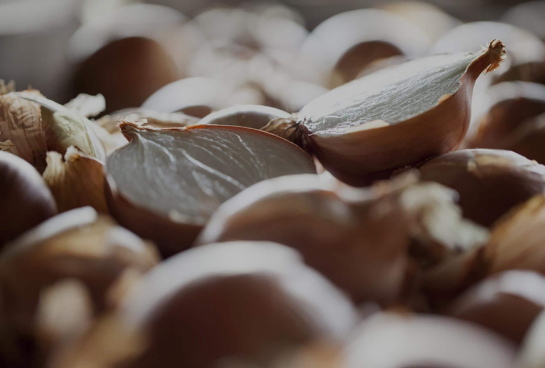 cebollas-marchite-calidad-maxima-producto