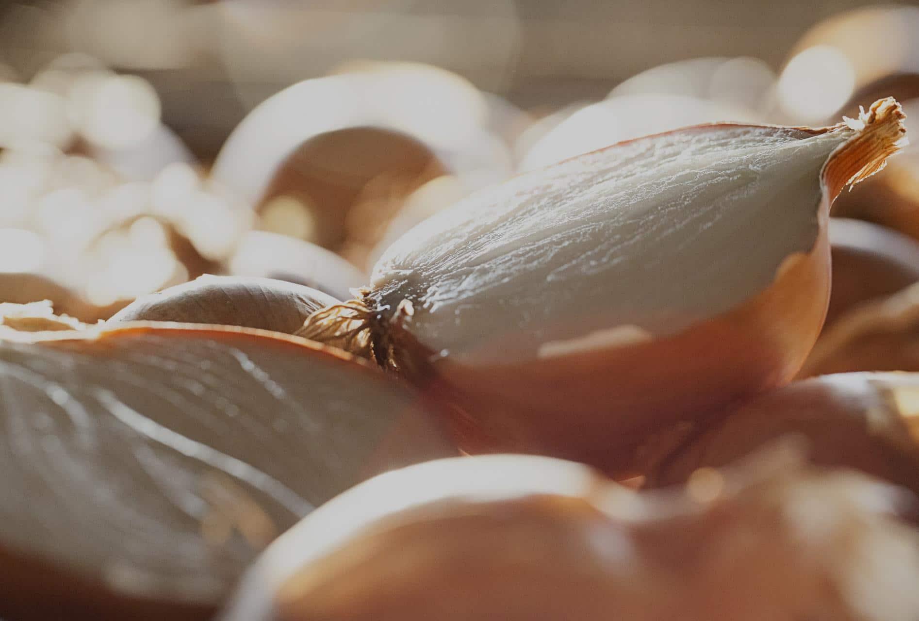 cebollas-marchite-nuestro-producto