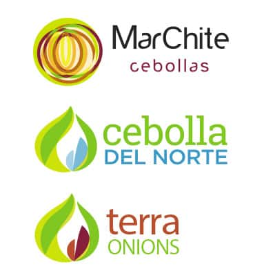Grain Onions Cebollas Marchite
