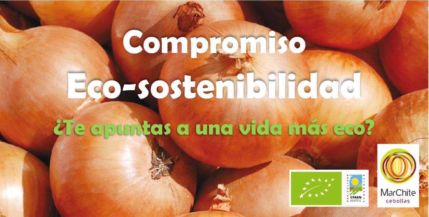 Eco sostenibilidad Cebollas Marchite